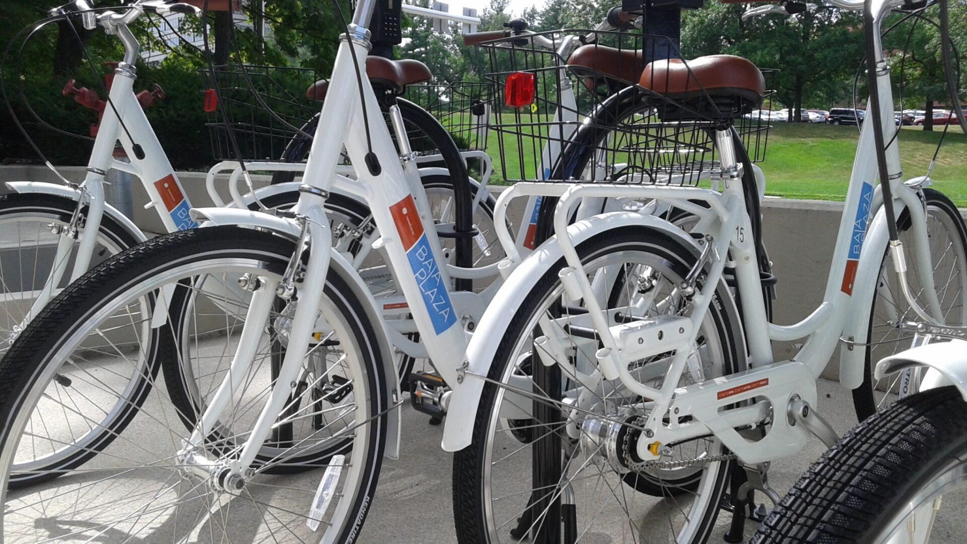 A close up shot of branded bicycles