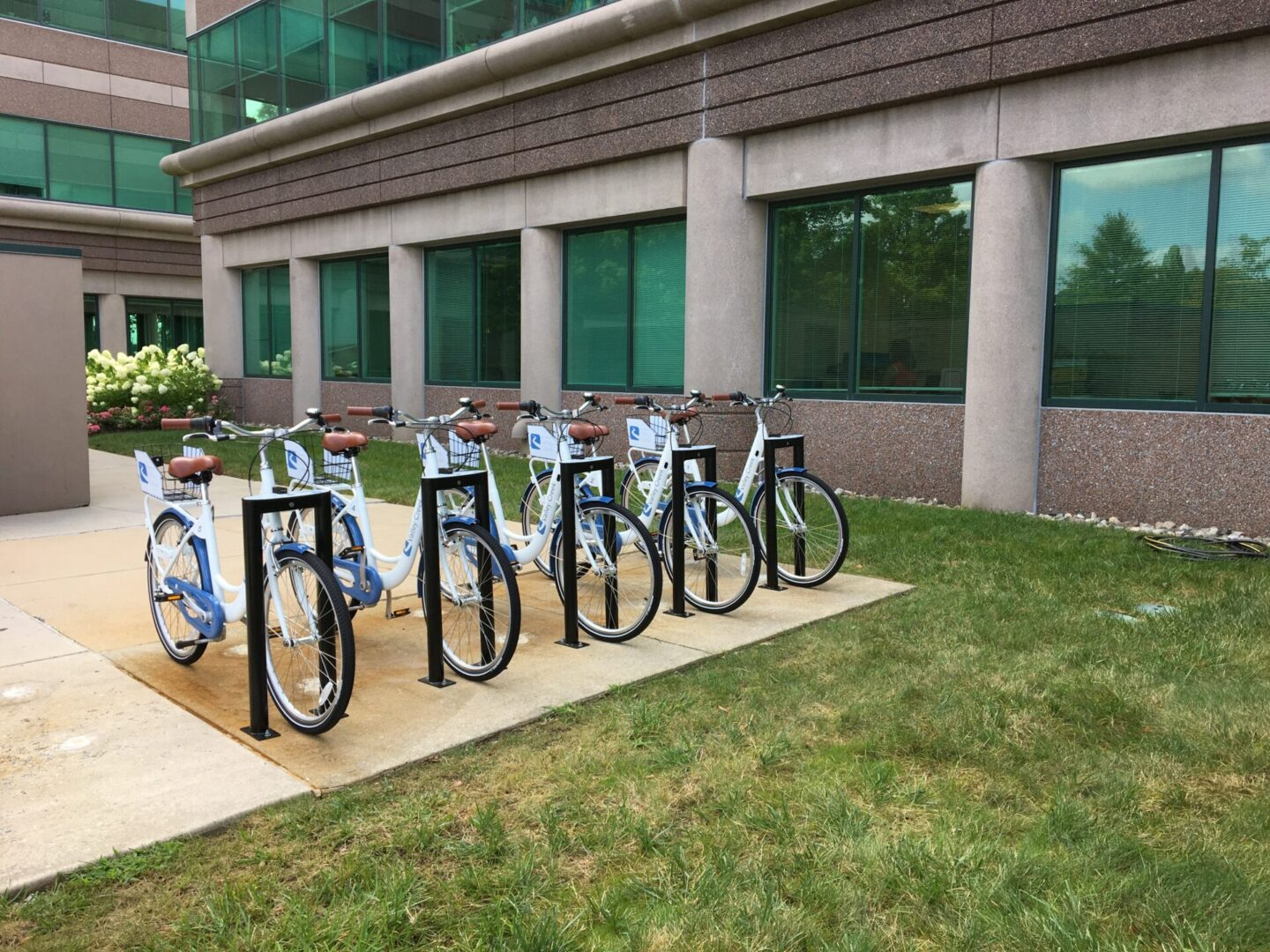 Five bicycles in front of a building with many windows