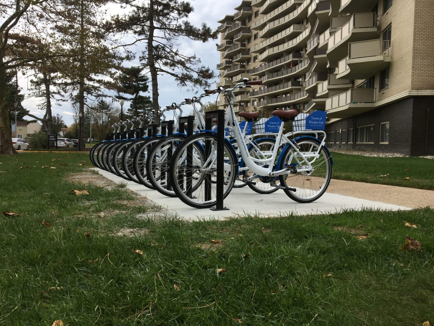 A set of bicycles parked on a white concrete surrounded by grass