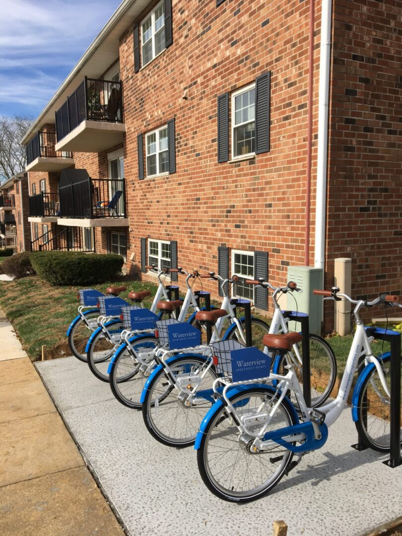 Blue bicycles parked in front of a brick-walled building