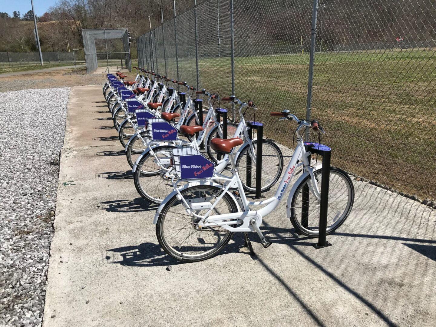 A line of bikes in front of a wide yard