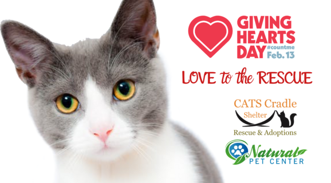 Giving Hearts Day!!!