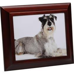Birch Wood 8 x 10 Photo Frame Urn in Cherry