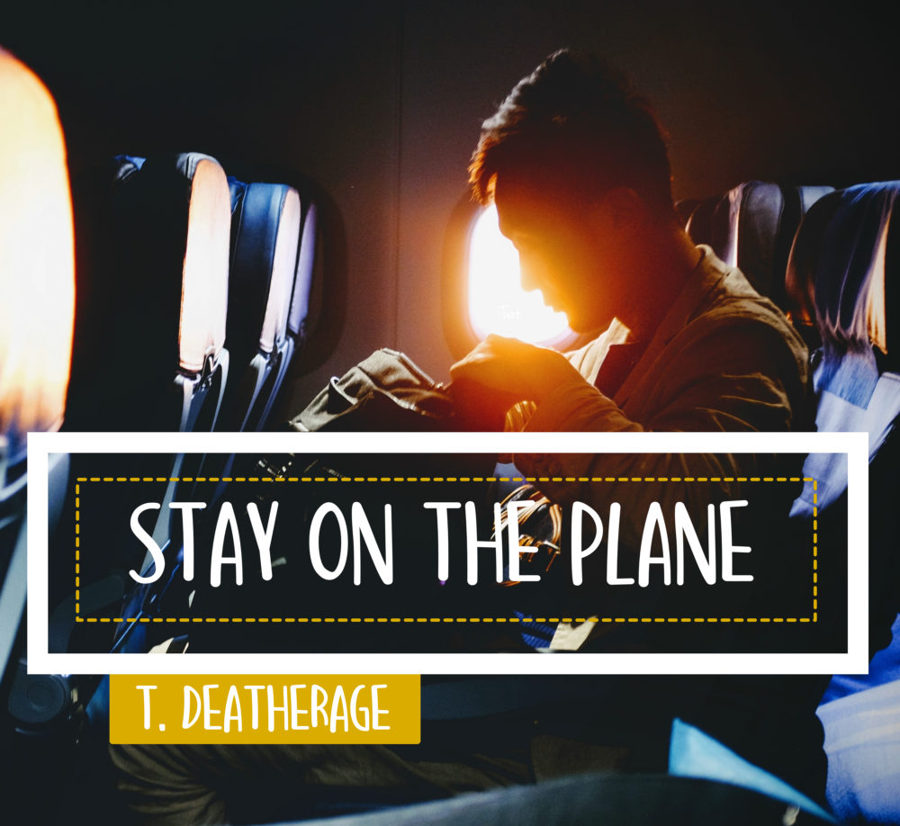 Stay on the Plane Image