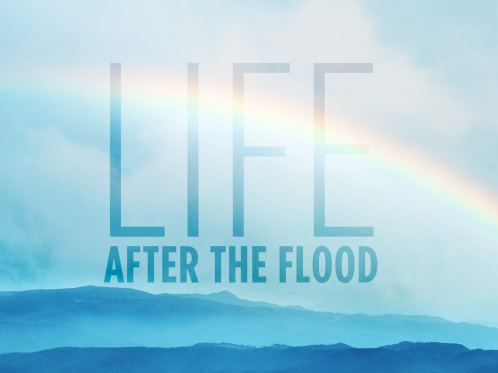 Life After The Flood  Image