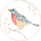 circle-bird-2
