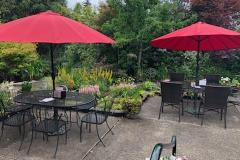 umbrellas-patio