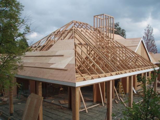 Plywood Roof Sheathing 01