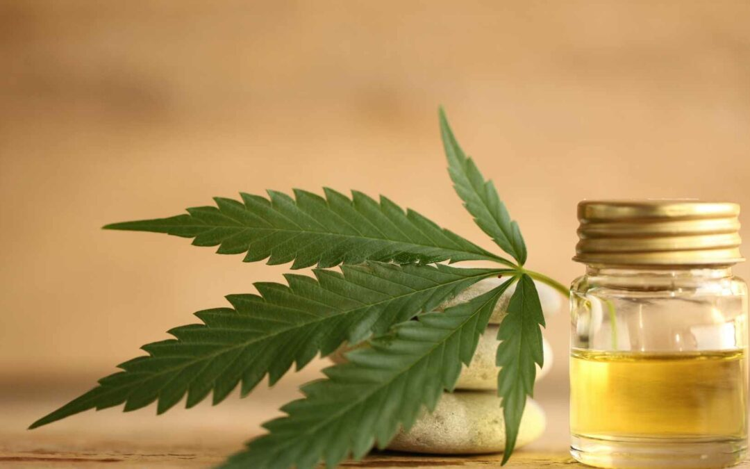 Is CBD safe during pregnancy? Check your facts here!
