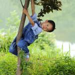 shutterstock_21601735 Anhui, Boy in tree