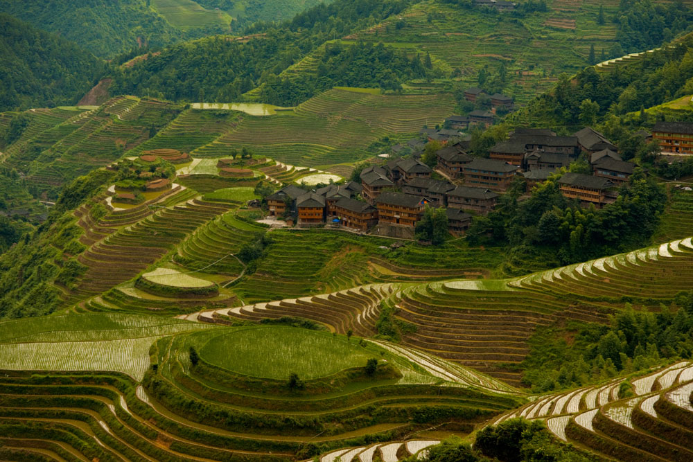 shutterstock_67301335 Guangxi, A traditional village is seen among a beautifully cascading series of rice terraces in Titian Longji, the Dragon's Backbone in Guanxi, China