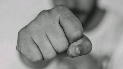 ARA-Fight