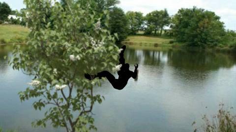 अमरूद्ध तोड़ने के चक्कर में तालाब में गिरा युवक- चली गयी जान