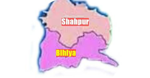 shahpur-Bhojpur-Ara-Bihar-map