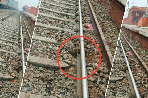 Bihiya - up main line railway track crack, big accident averted