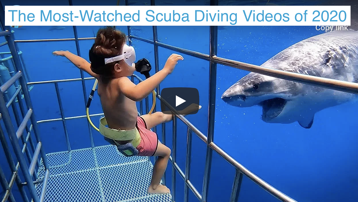 Tje most watched scuba diving videos of 2020