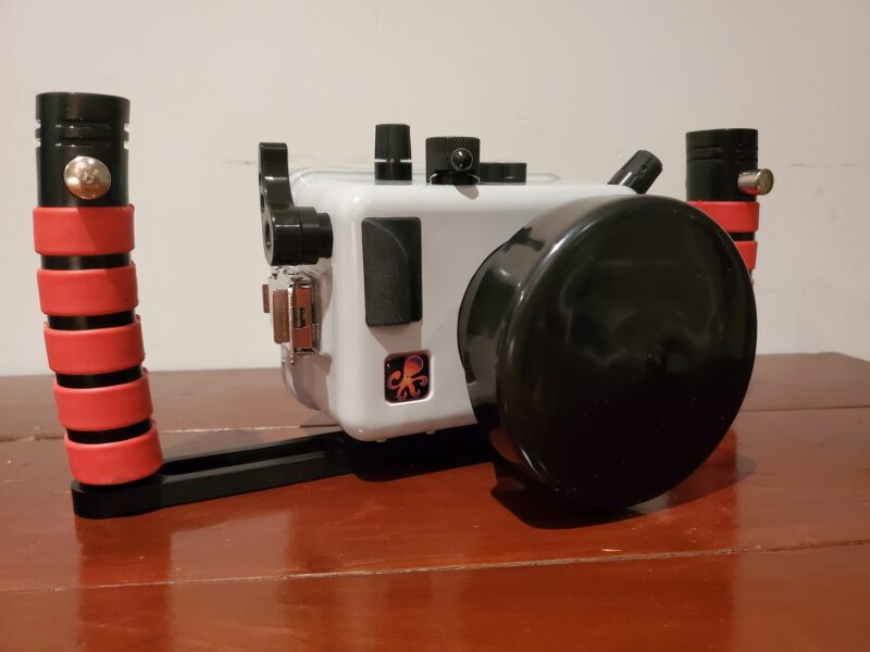 What I Learned From Buying My First Underwater Camera