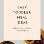 Easy Toddler Meal Ideas for Breakfast Lunch and Dinner