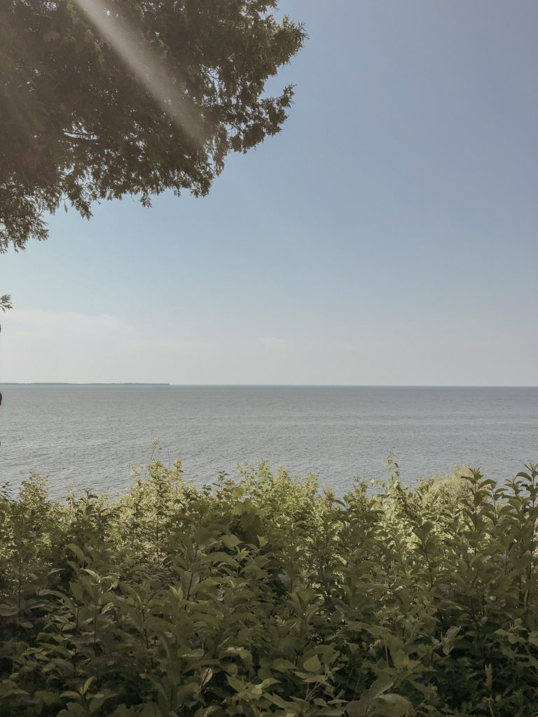 view of the harbor in peninsula state park in door county