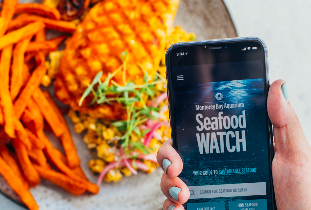 Seafood Watch: The Must-Have App For Choosing Sustainable Seafood