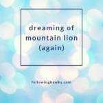 Dream: Mountain Lion (again)