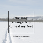 Healing My Feet