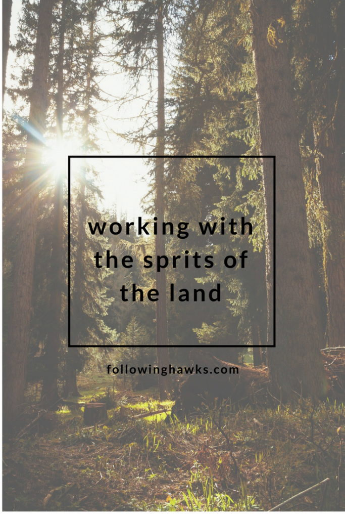 How I learned to work with nature spirits.