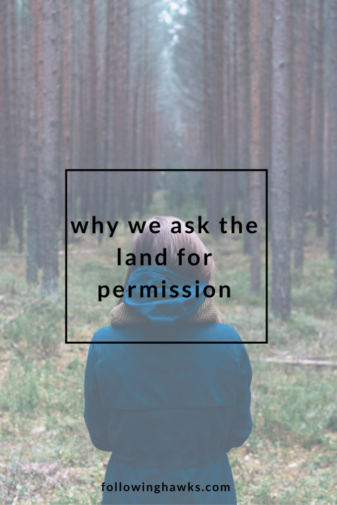 Spirit of the Land | Guides | Asking the land for permission