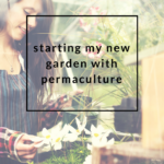 Starting A New Garden with Permaculture