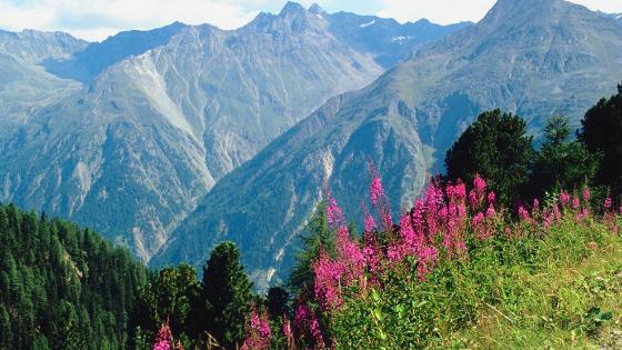 Mountains | Shamanic Journey | Spirits of the Land