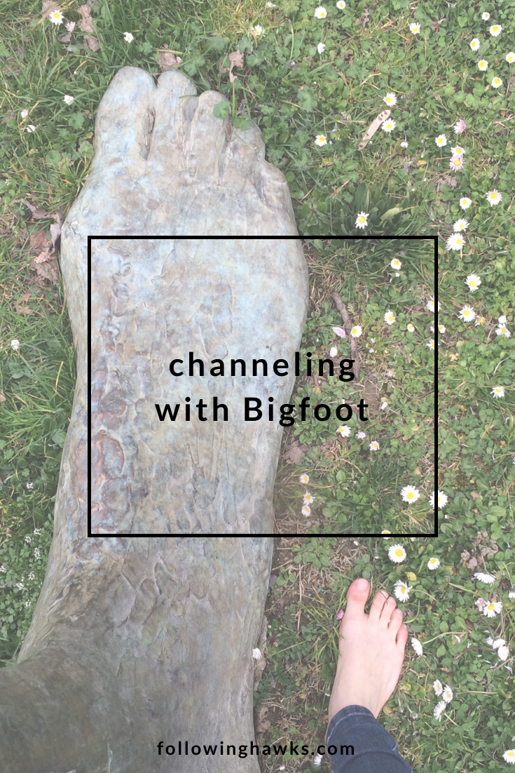 Channeling with Bigfoot. Click through to read about my month-long adventure channeling with and ultimately embodying the energy of Bigfoot. #shamanism #bigfoot #spiritguides