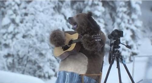 bear playing