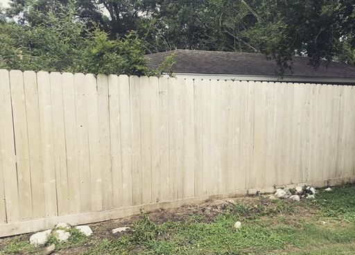 Fence Cleaning