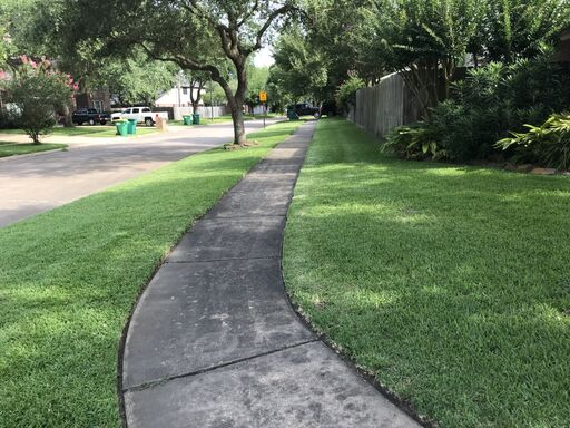 Fence Cleaning & Restoration Services