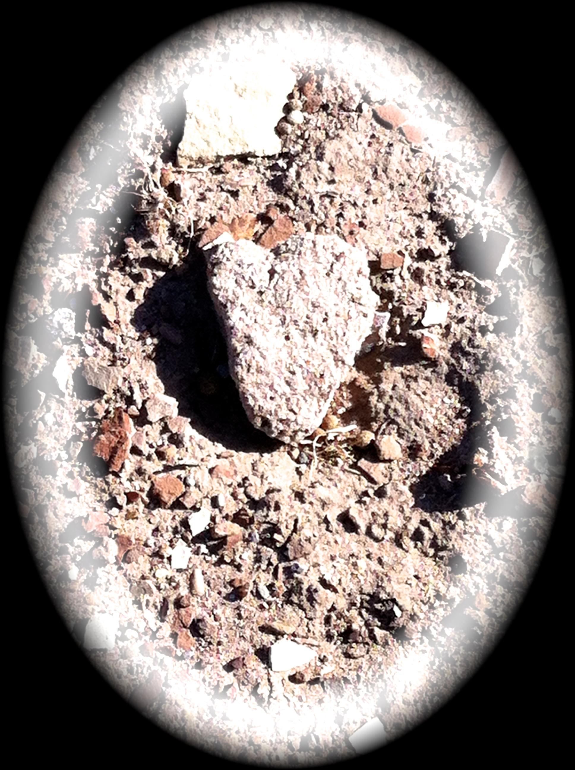 heart 4.22