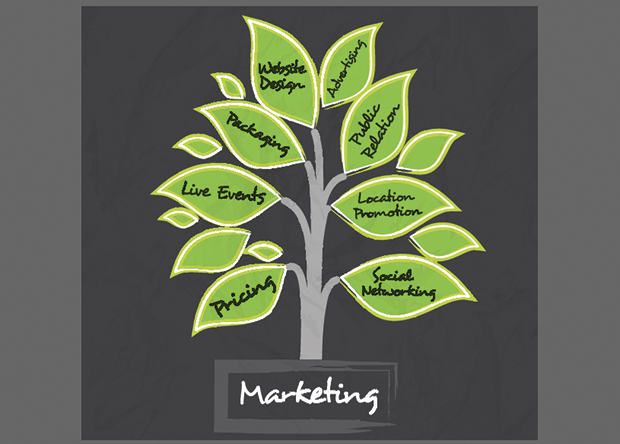 marketing services; expert local