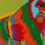 gorilla-900x356
