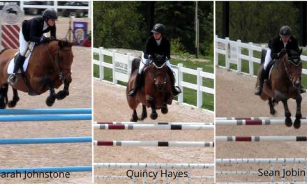 Show Jumping Success Stories