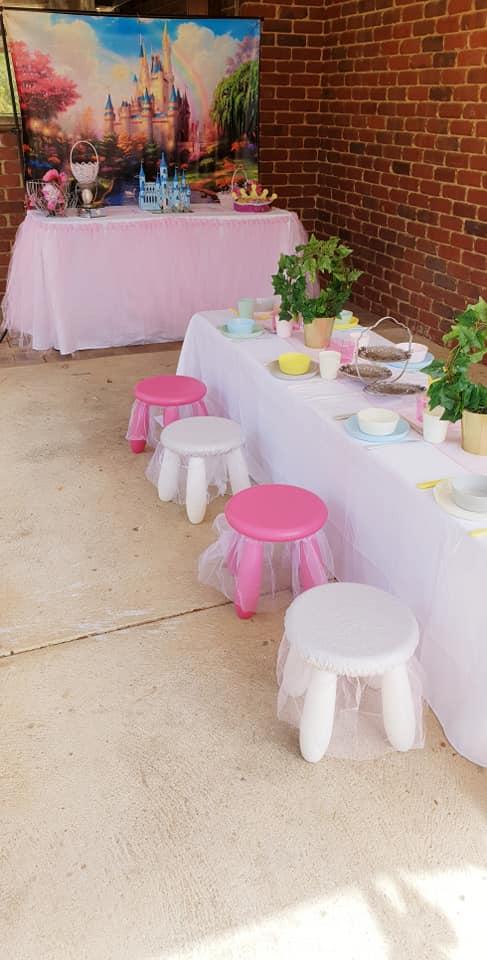 Princess party13