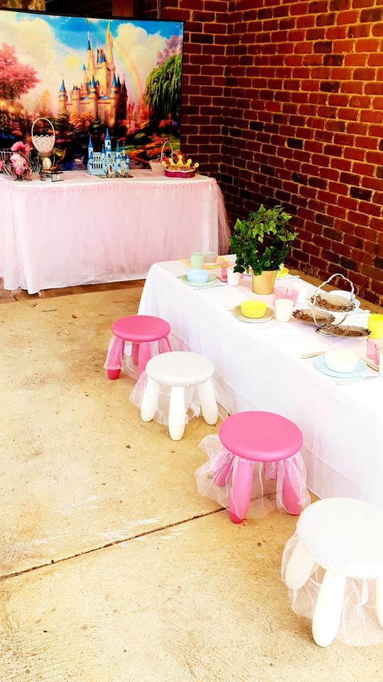 Princess party2