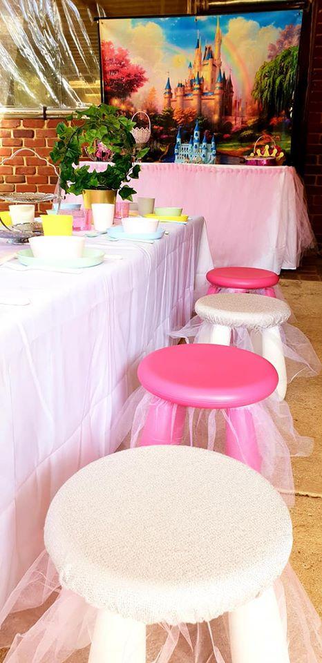 Princess party5