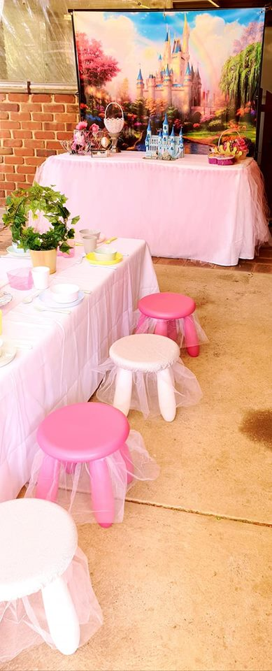 Princess party9