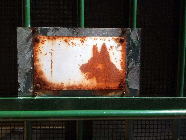 rusteddog