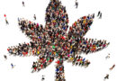 Is a Marijuana Business Franchise a Good Idea Right Now?