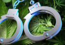 Every Day, Someone Faces Charges For Cannabis Possession