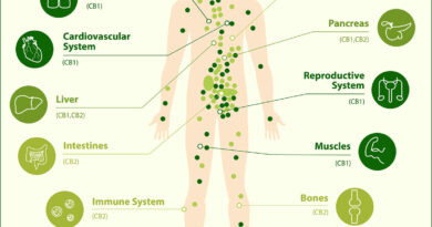 Are You Endocannabinoid Deficient? (Causes and Solutions!)