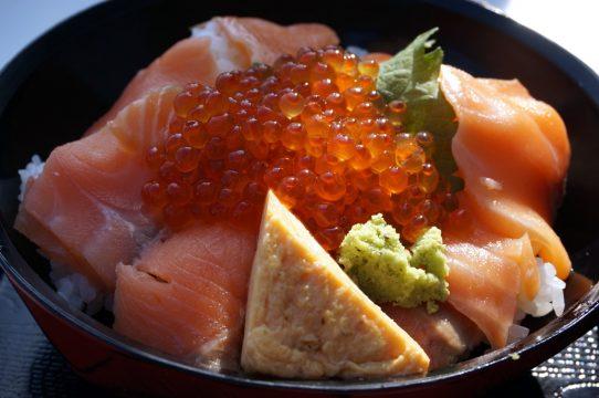 A culinária japonesa está entre os principais atrativos do Festival do Japão. Foto: Divulgação