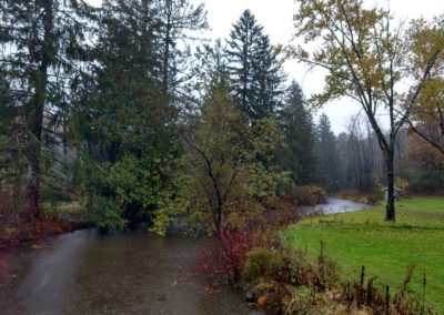 Meandering Stream in the Rain
