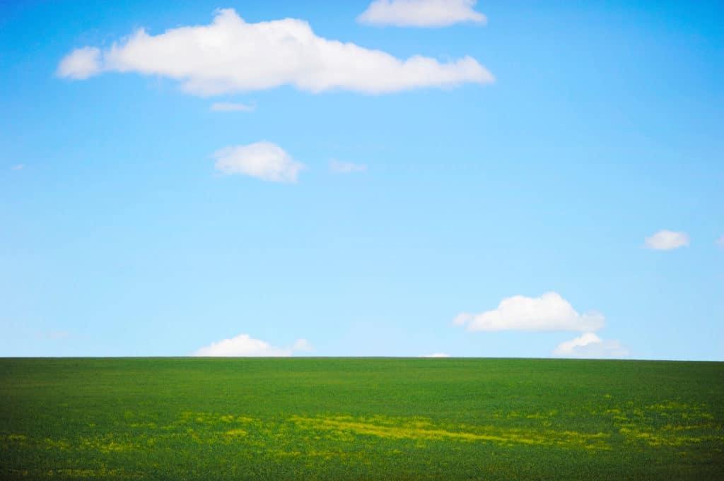 blue-sky-green-grass-landscape