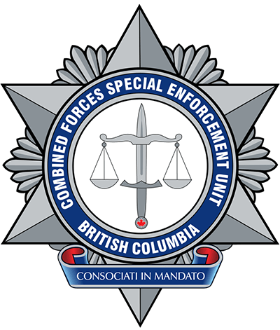combined forces special enforcement